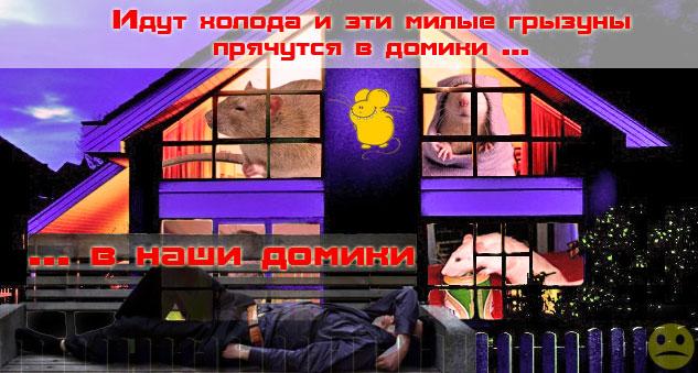 """"""",""""www.otpugiwateli.ru"""
