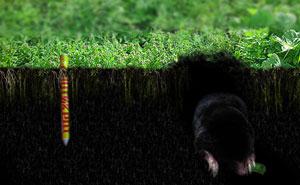 Отпугиватель кротов создает колебания в среде обитания крота